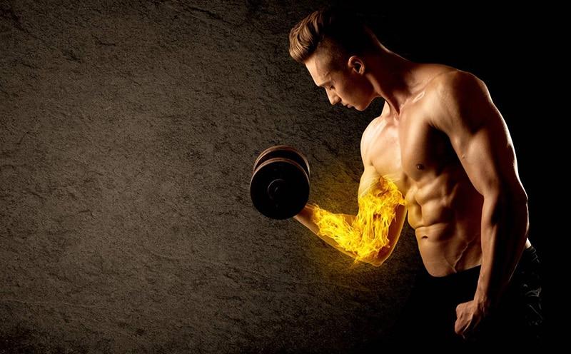 Brûleur de graisse pour la musculation
